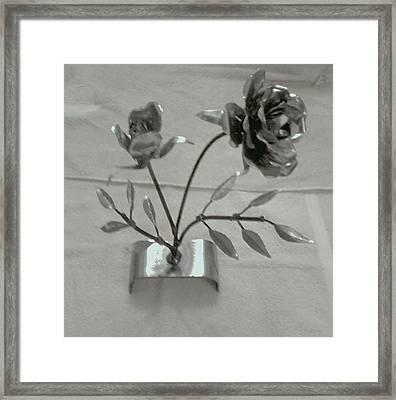 Eternal Rose Framed Print by Jeff Orebaugh