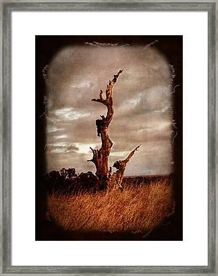 Eternal Spires Framed Print by Laura Iverson
