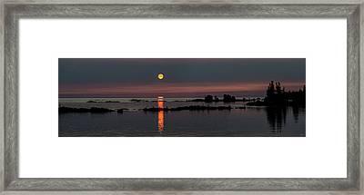 Eternal Summer Framed Print