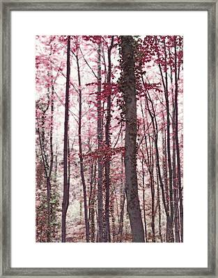 Ethereal Austrian Forest In Marsala Burgundy Wine Framed Print