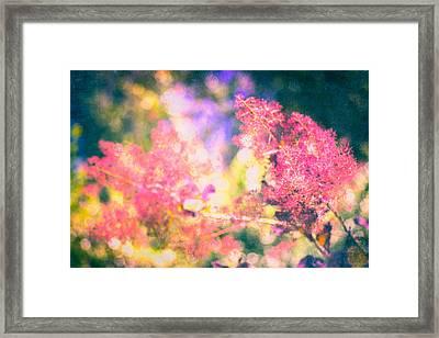 Ethereal Bloom  Framed Print
