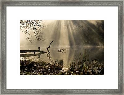 Framed Print featuring the photograph Ethereal - D009972 by Daniel Dempster