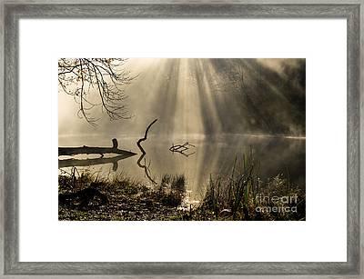 Ethereal - D009972 Framed Print