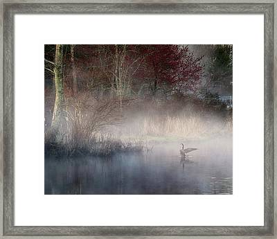 Framed Print featuring the photograph Ethereal Goose by Bill Wakeley