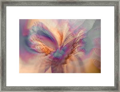 Ethereal Life 5. Interior Ideas Framed Print by Jenny Rainbow