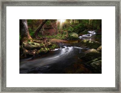 Framed Print featuring the photograph Ethereal Morning 2017 by Bill Wakeley
