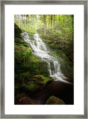 Ethereal Morning Framed Print by Bill Wakeley