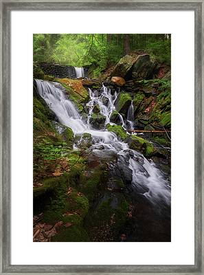 Framed Print featuring the photograph Ethereal Solitude by Bill Wakeley