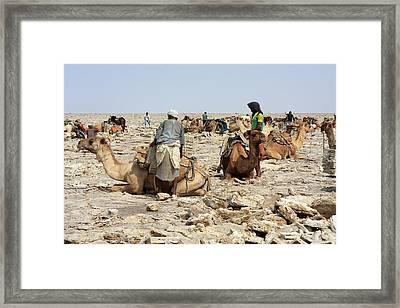 Ethiopian Salt Flats Framed Print