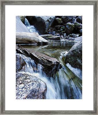 Etruded Log-end In Merced River II Framed Print by D Kadah Tanaka