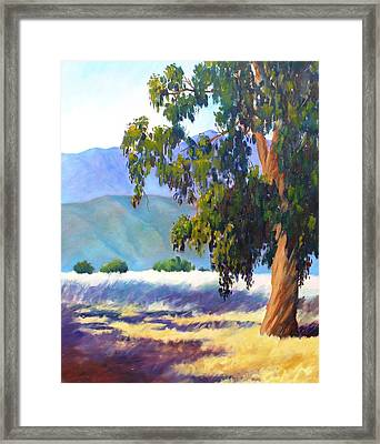 Eucalyptus On The Bluffs Framed Print by Dorothy Nalls