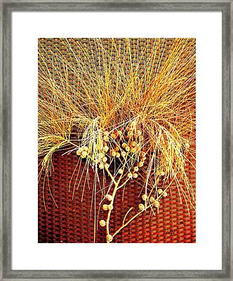 Eucalyptus Red Framed Print