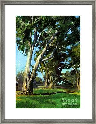 Framed Print featuring the painting Eucalyptuses by Sergey Zhiboedov