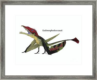 Eudimorphodon Resting With Font Framed Print by Corey Ford