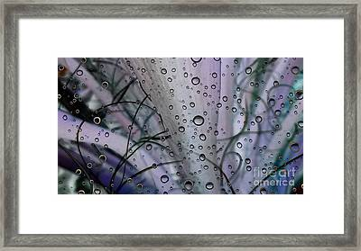 Euphoria 1 Framed Print by Eva Maria Nova