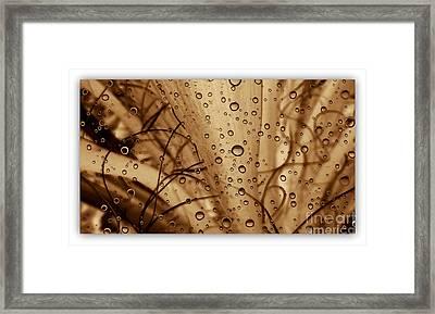 Euphoria Framed Print