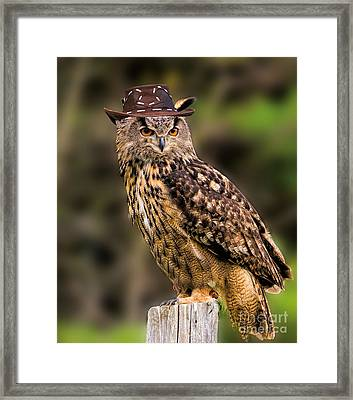 Eurasian Eagle Owl With A Cowboy Hat Framed Print