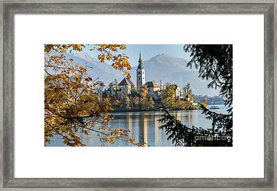 European Beauty Framed Print