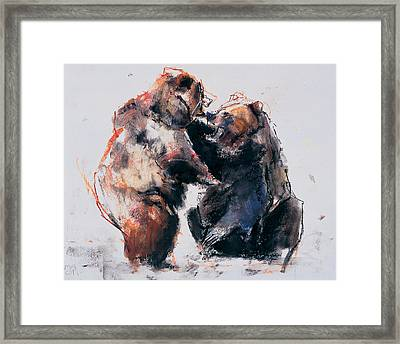 European Brown Bears Framed Print