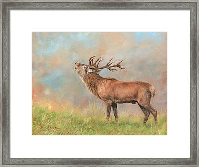 Framed Print featuring the painting European Red Deer by David Stribbling