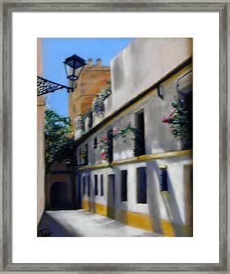 European Street Framed Print