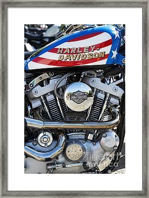 Evel Harley Davidson Framed Print by Tim Gainey