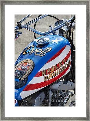 Evel Harley  Framed Print by Tim Gainey