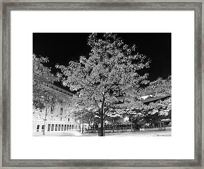 Evening At Eastman Framed Print by Joseph Gillette