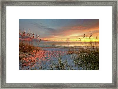 Evening At The Beach Framed Print