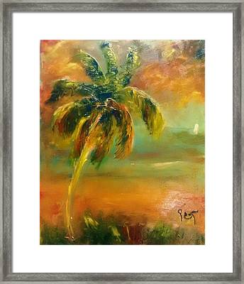 Evening Beachlight Framed Print by Patricia Taylor