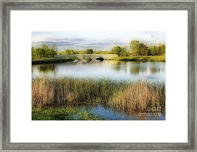Evening Calm Framed Print by Teresa Zieba