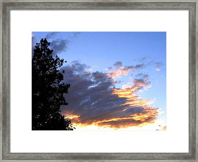Evening Color Framed Print by Will Borden