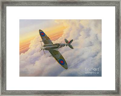 Evening Flight Framed Print by Michael Swanson
