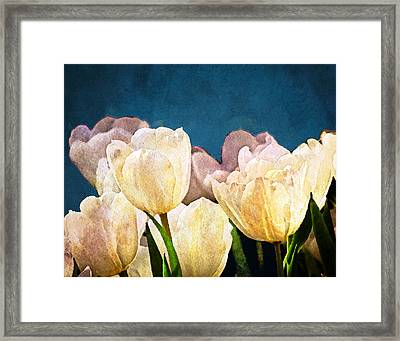 Evening Garden Framed Print by Moon Stumpp