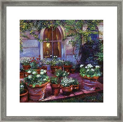 Evening Garden Patio Framed Print by David Lloyd Glover