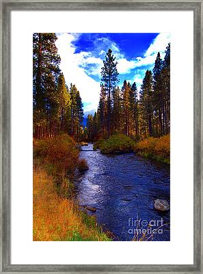 Evening Hatch On The Metolius River Photograph Framed Print by Diane E Berry