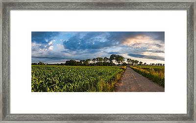 Framed Print featuring the photograph Evening In A Cornfield by Dmytro Korol