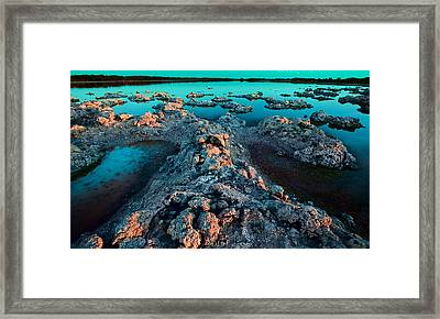 Framed Print featuring the photograph Evening In Lake Walyungup by Julian Cook
