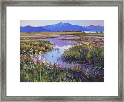 Evening In The Marsh Framed Print