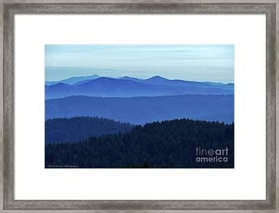 Oregon Blues  Framed Print