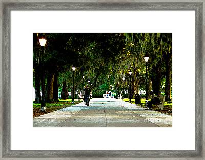 Evening In The Park Framed Print by David Lee Thompson