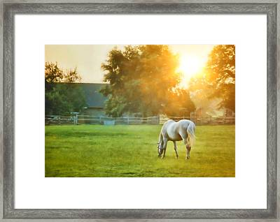 Evening Mist Framed Print by JAMART Photography