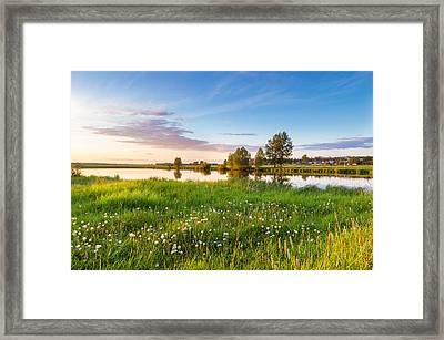 evening on the river with a field of dandelions, Russia, Ural Framed Print