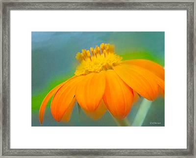Evening Orange Greeting Card Framed Print by William Martin