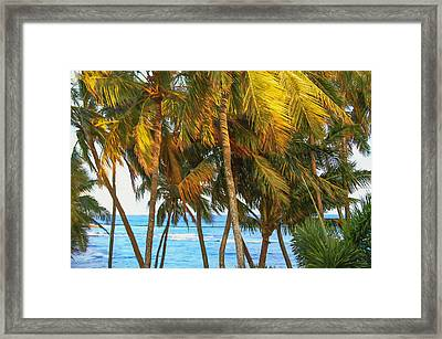 Evening Palms In Trade Winds Framed Print by Bonnie Follett