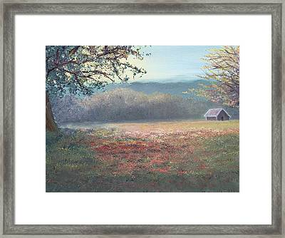 Evening Pasture Framed Print by Patti Gordon