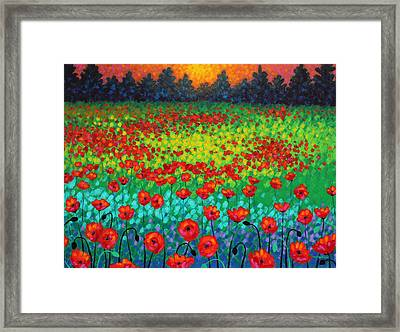 Evening Poppies Framed Print by John  Nolan