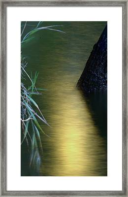 Framed Print featuring the photograph Evening Reflections by Karen Musick