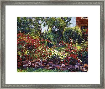 Evening Roses Framed Print by David Lloyd Glover