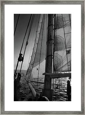 Evening Sail Bw Framed Print